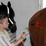 indenai - piesimas ant zirgu - 1